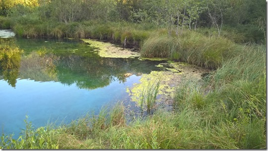 Eko patrulja - Voda - Zelenci